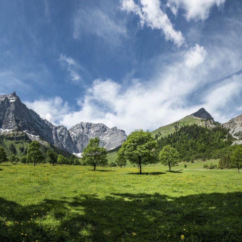 Gesundheits-kompetenz Tirol